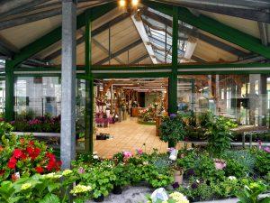 Geschäft in Scharnstein Blumen Strasser